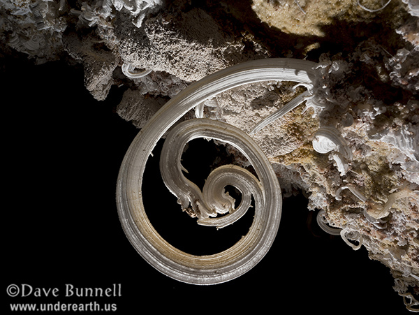 The Virtual Cave: Gypsum Flowers